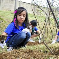 Embracing a Place-Based Approach in the School Garden