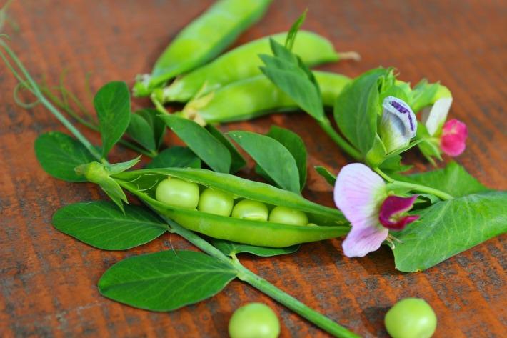 Fresh peas.
