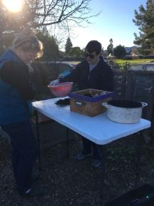 Debbie Stevens, of Worm Endings Unlimited, demonstrates how to harvest worm castings.