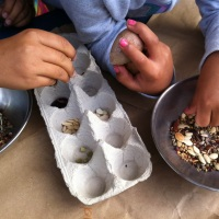 Six Simple Reasons To Introduce Kids to Seed Saving